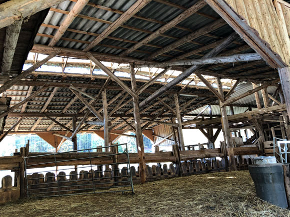 Holzbau Schleusenhof Stall Innen